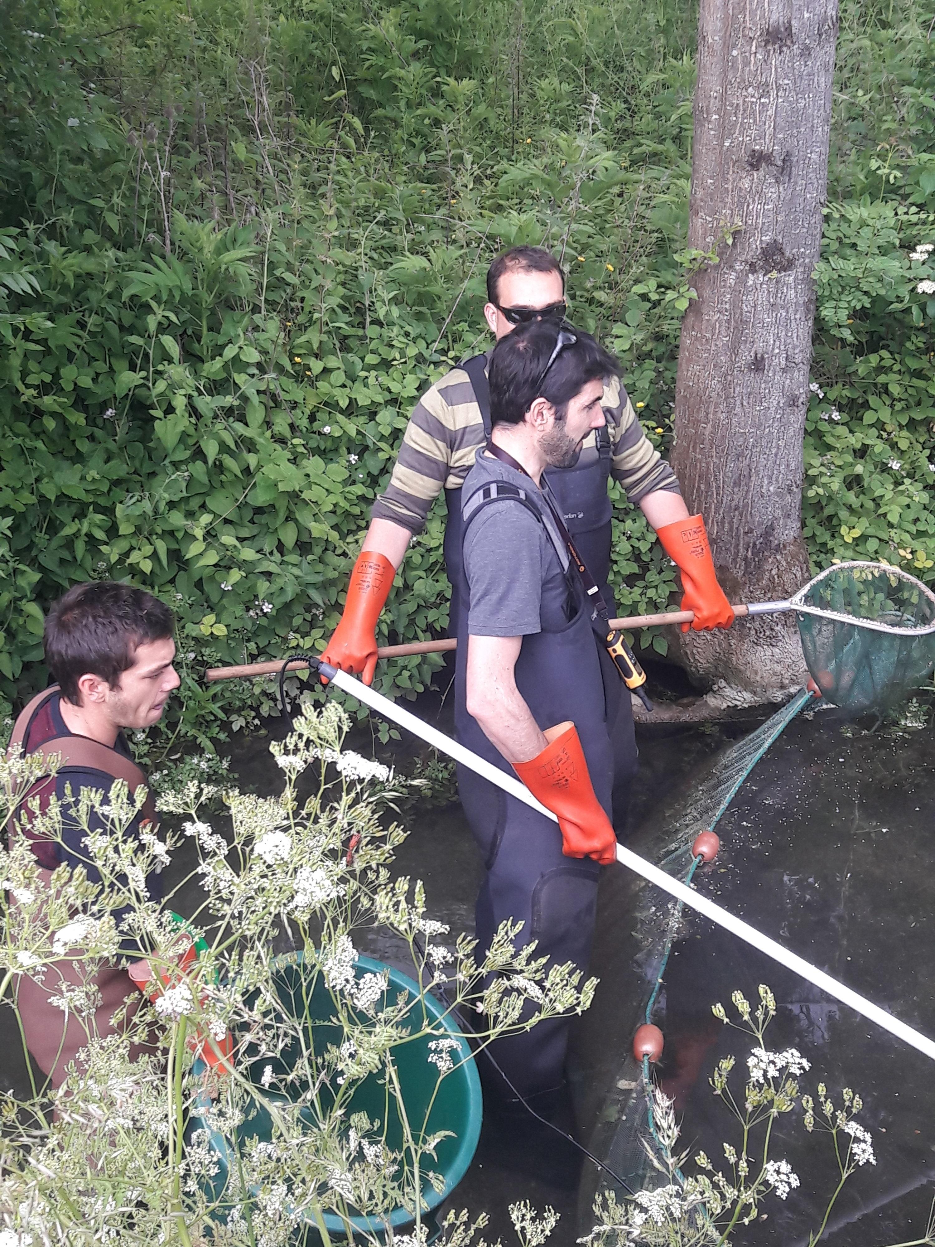 pêche électrique 2