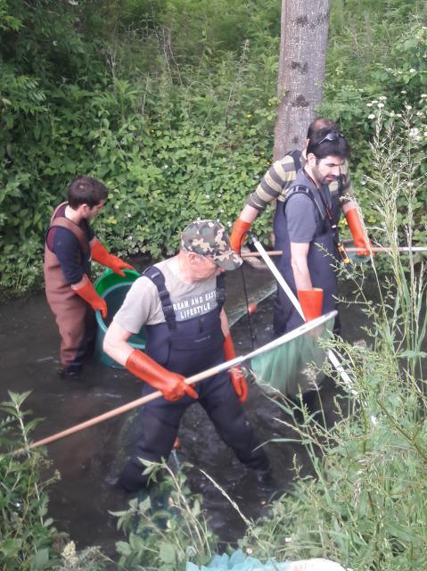 pêche électrique 7