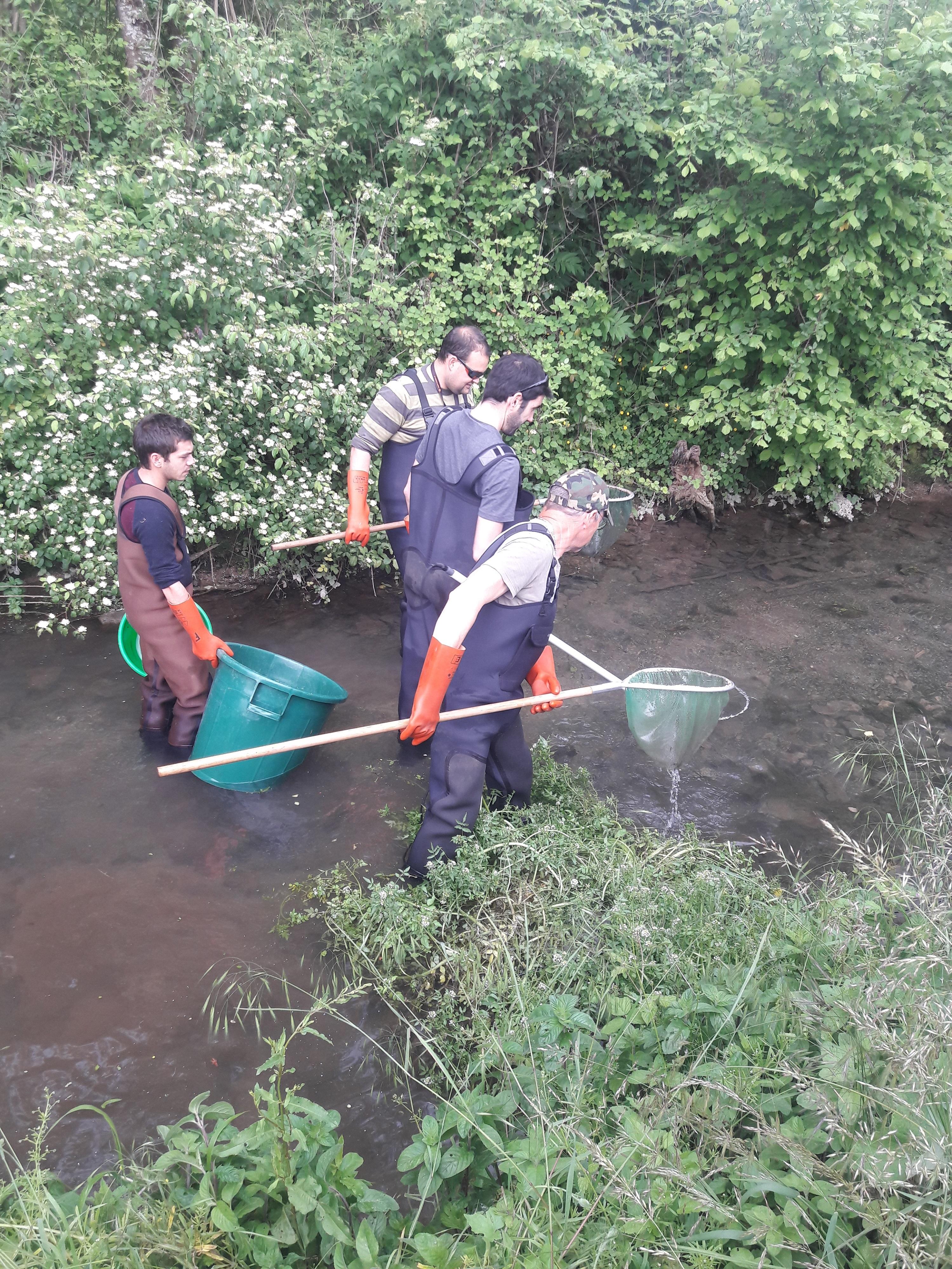 pêche électrique 9